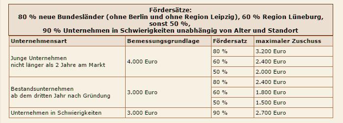 bafa_hoehe_foerdergelder_Unternehmen
